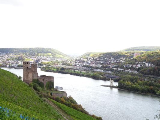 le château Ehrenfels et la tour des Souris