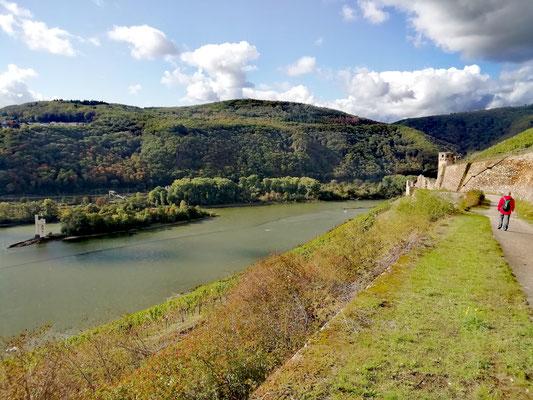 la tour des Souris et le château Ehrenfels