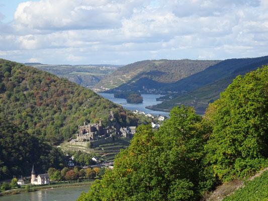 Le Rhin est bordé de nombreux châteaux