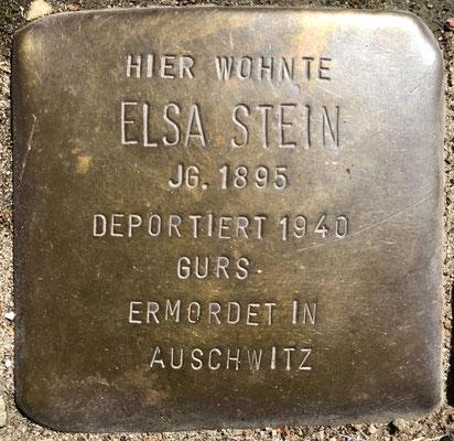 Elsa Stein