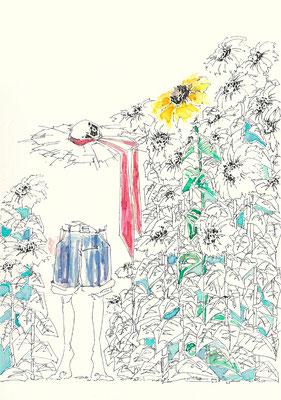 向日葵少年。