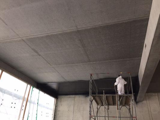 Neubau Ausstellungshalle, Wilderswil / Februar – Juni 2019