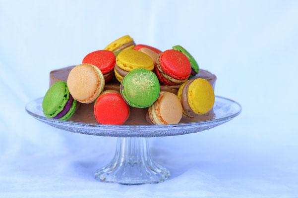 Schoggimousse Torte mit Macaron