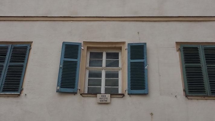 """Гёте ненавидел город Тюбинген, за что его жители повесили табличку """"Здесь тошнило Гёте"""", Тюбинген, 2015"""