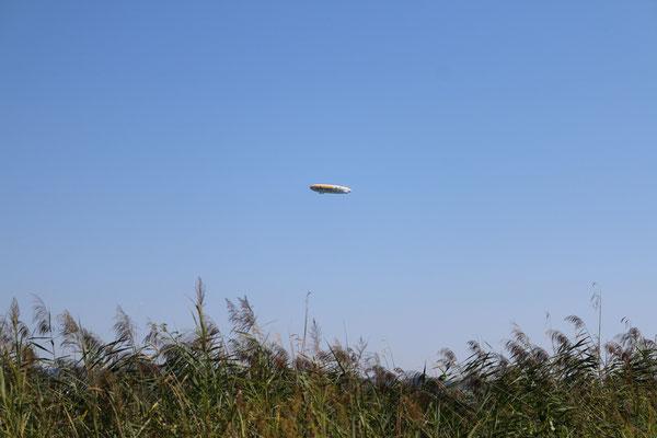 Цеппелины, созданные графом Цеппелином, бороздят воздушные просторы его родного города у Боденского озера по сей день, Бодензее (Bodensee), 2015