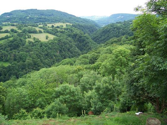 Vallée du Violon