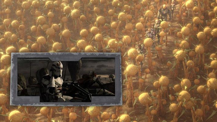 Saleucami war zuerst in Die Rache der Sith zu sehen, als die Jedi Stass Allie von ihren Klontruppen im Rahmen der Order 66 getötet wurde.