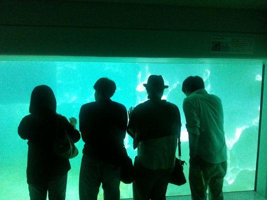 社会人サークルISTコミュニティ 動物園&上野散策恋活イベント