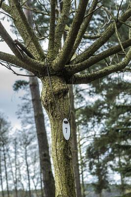 viele Bäume sind liebevoll nummeriert