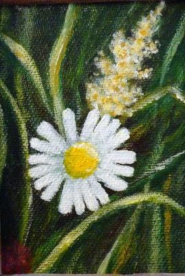 (*) Margerite, 10x7,5 cm,  Acryl auf Malpappe
