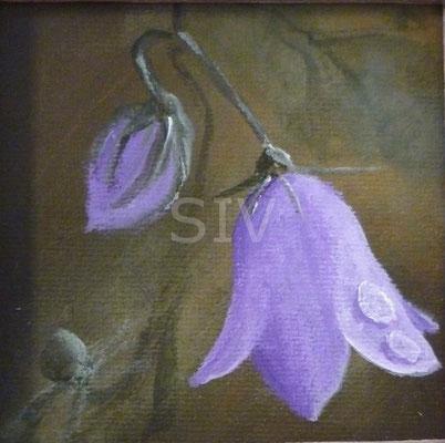 (*) Glockenblume, 8x8 cm, Acryl auf Malpappe