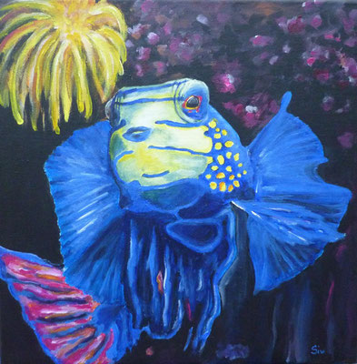 (*) Mandarinfisch Tinkabell, 40x40 cm, Acryl auf Leinwand