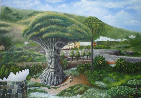 (*) Drachenbaum auf Teneriffa, 50x75 cm, Acryl auf Leinwand