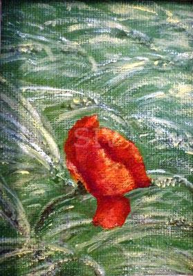 Mohn im Roggen, 10x7,5 cm, Acryl auf Malpappe