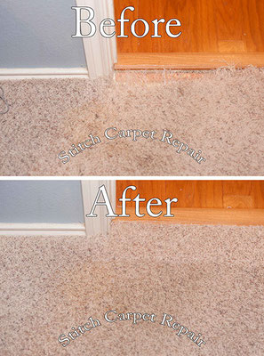 Carpet repair patch dog pet damage Austin Round Rock Cedar Park Manor Bee Cave San Marcos