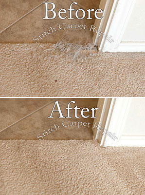 Carpet patch do to cat pet damage Austin Round Rock Cedar Park Manor Bee Cave San Marcos