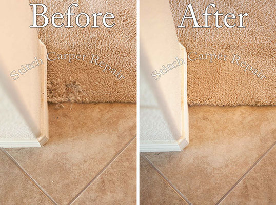 Small carpet repair cat pet damage patch in front kitchen transition