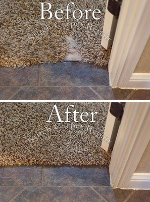 Carpet patch dog pet damage in bedroom Austin Round Rock Cedar Park Manor Bee Cave San Marcos