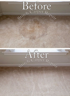 Carpet patch repair potted plant stain Austin Round Rock Cedar Park Manor Bee Cave San Marcos