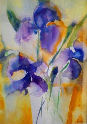 Iris violets, 50 x 65, eingerahmt, verglast, CHF 470.00