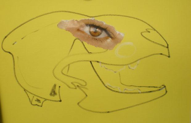 Schädel und dessen Wahrnehmung - Collage/Stift