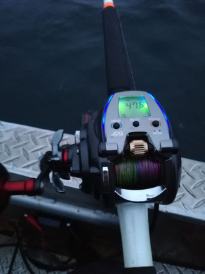 Begeistert noch immer - Daiwa Seaborg 300 JL