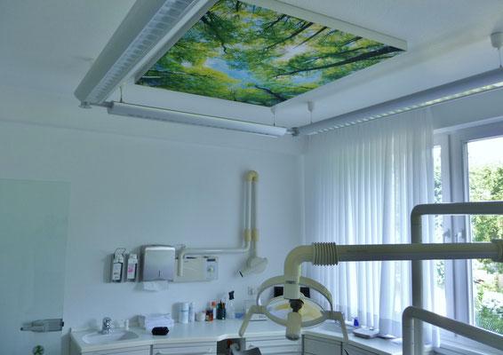 In der Zahnarztpraxis Schwalen eine Aufnahme vom Deckenbild.