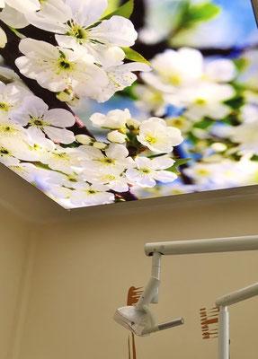 Die LEDs im beleuchteten Deckenbild sind sehr hell und können, je nach Moriv, auch als Deckenlicht eingesetzt werden.