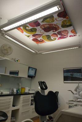 Zahnarzt Deckenbild 3 -  Dr.Grizwa Hannover