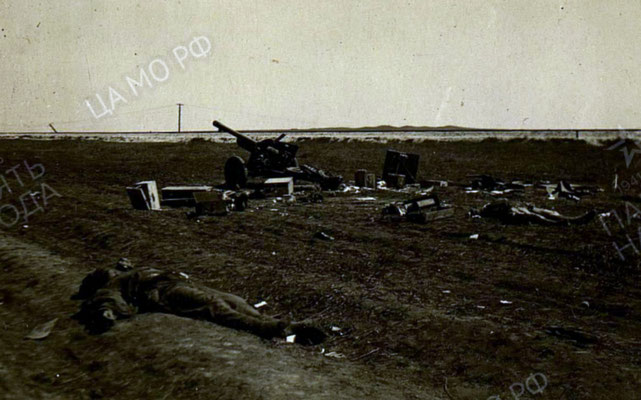 Разгромленный штурмовиками обоз противника в районе Паша Салын / The opponent's transport column crushed by attack planes around the Pasha Salyn
