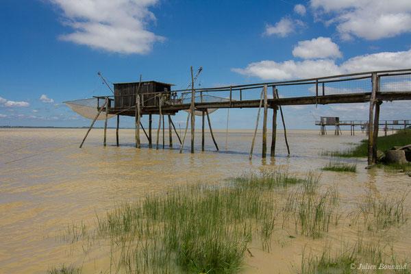 Estuaire de la Gironde (Port de Vitrezay, Saint-Sorlin-de-Cognac (17), France, le 21/06/2018)