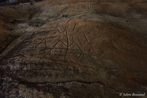 Pétroglyphes (Kourou, le 06/12/2016)