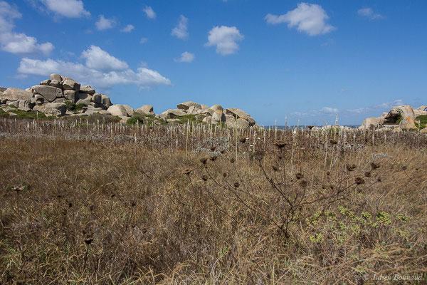 (îles lavezzi, Bonifacio (2A), France, le 06/09/2019)