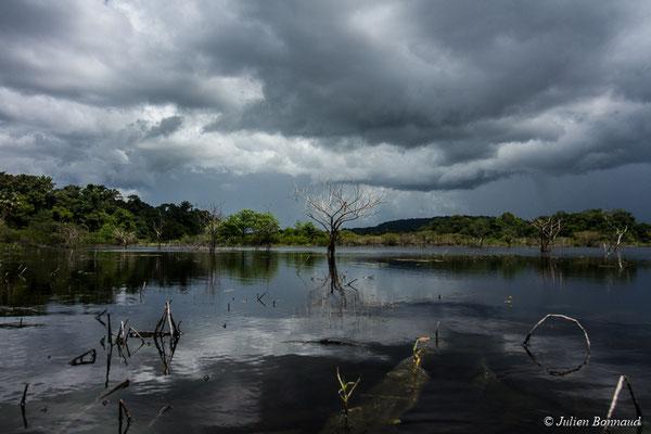 Lac Pali (Kaw-Roura, le 05/08/2017)