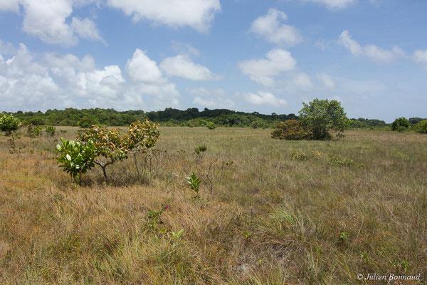 (Centre Spatial Guyanais, Kourou, le 22/09/2017)