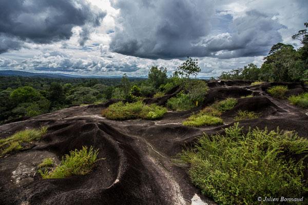 Savane-roche Virginie, Régina, le 15/07/2017