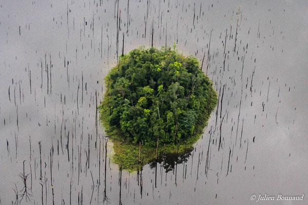 Ilot forestier sur le barrage de Petit-Saut (prise de vue depuis un hélicoptère)
