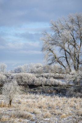 Wintereinbruch - Foto: Holger Tobuschat