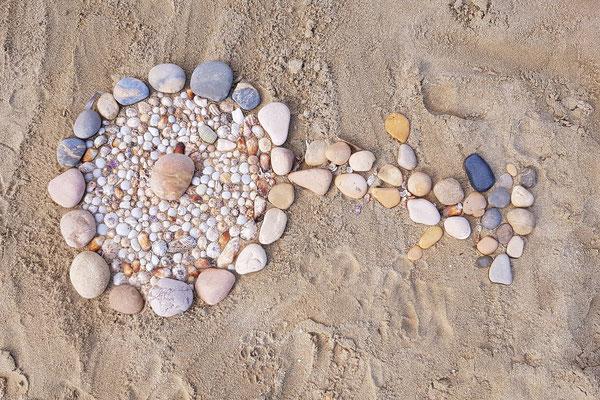 Strandblume für Kathrin