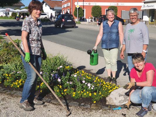 Wechselbepflanzung auf den Blumenbeeten vor dem Dorfbrunnen 2021