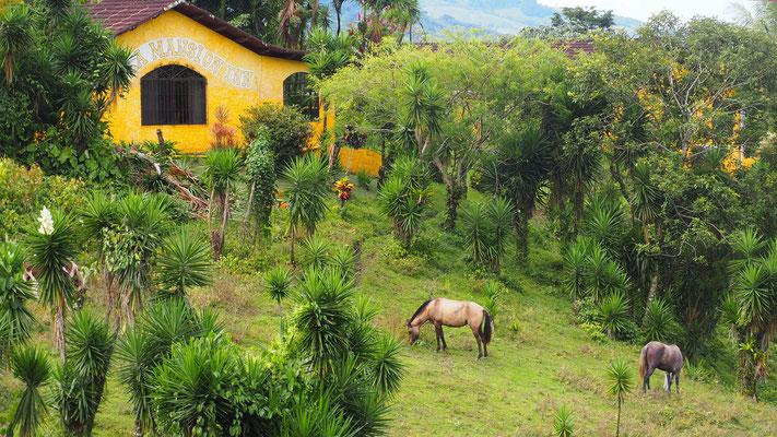 Gandoca Manzanillo Reserve, Costa Rica