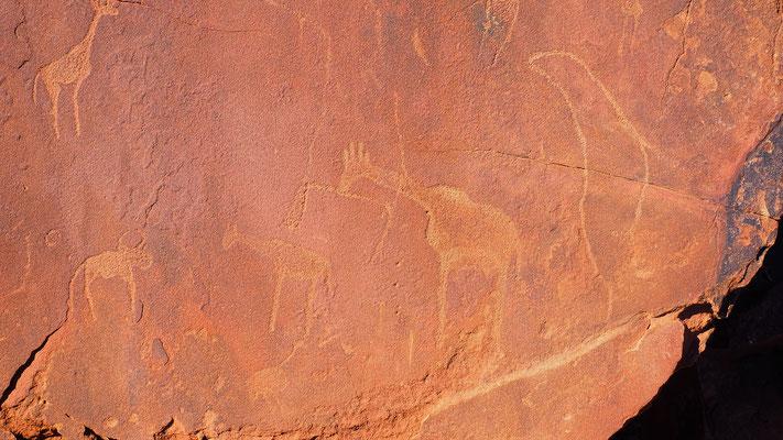 Namibia, Felsgravuren von Twyfelfontein