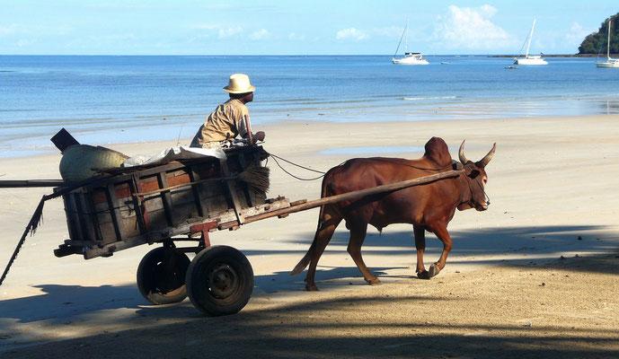 Müllabfuhr in Madagaskar