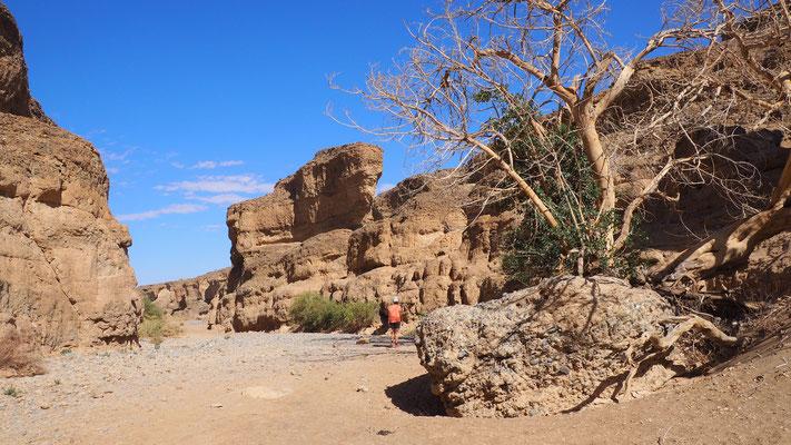 in südlicher Richtung weitet sich der Canyon