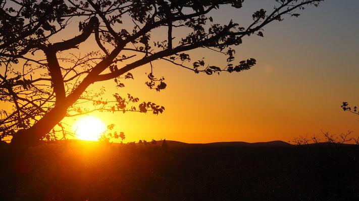 Sonnenuntergang Etosha Süd