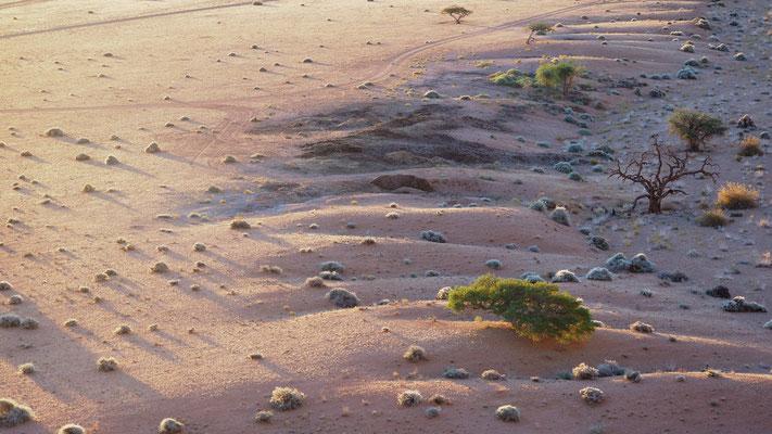 die Weite der Namib geht über in die Gebirgslandschaft der Tiras Mountains