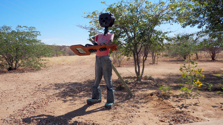 Vogelscheuche in Mopane, Namibia