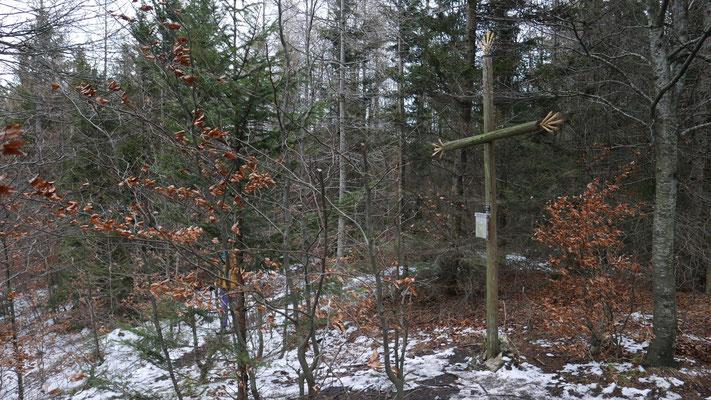Ochsenkogel, Oberösterreiche Voralpen