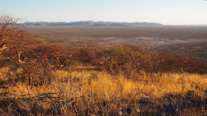 Blick über die weite Ebene bei Mopane