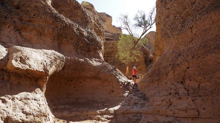 über Stufen gelangt man vom Parkplatz hinunter in den Sesriem Canyon